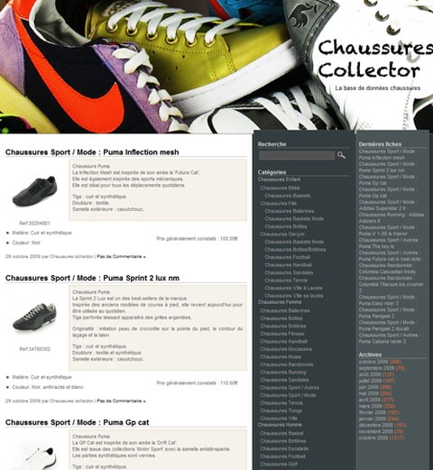 chaussures-collector