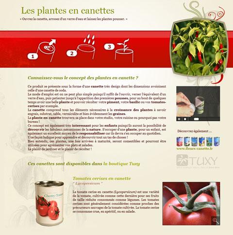 plantes-en-canettes